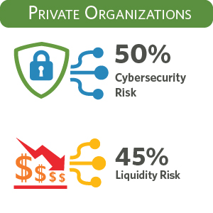 How do private organizations view cybersecurity risk