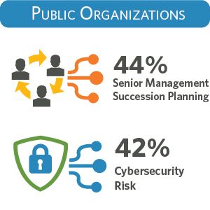 How do public organizations see cybersecurity risk?
